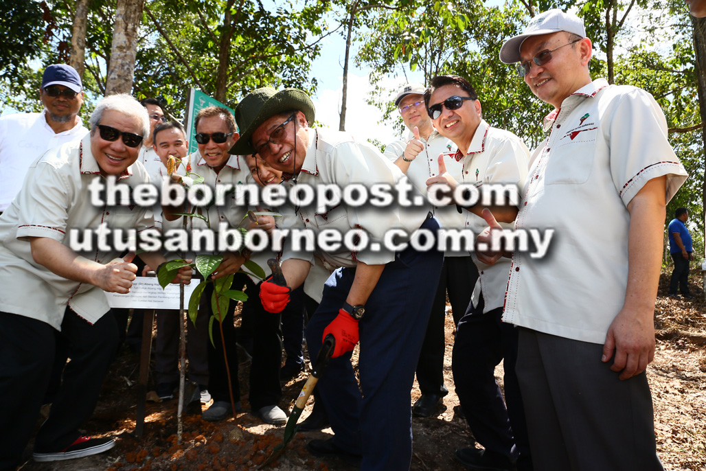 'Largest forest cover in the nation'