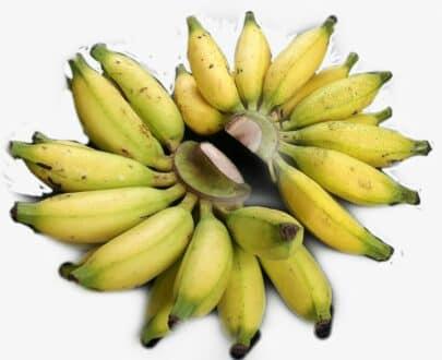 Banana @ Pisang