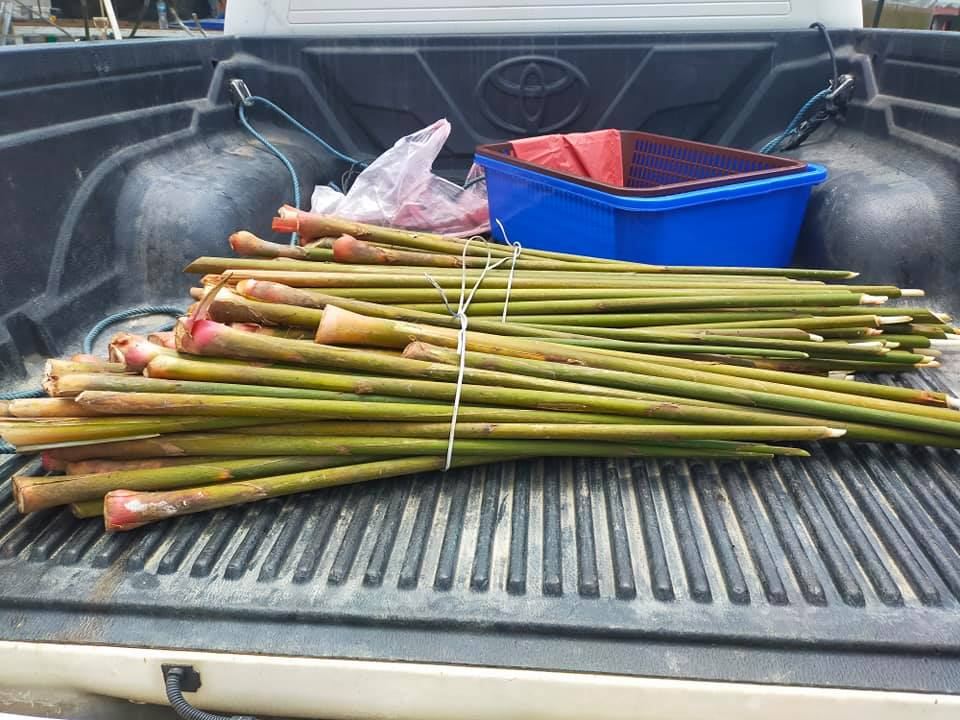 Pelbagai produk makanan tempatan di TIMOGAH dengan sistem pembelian secara onlin…
