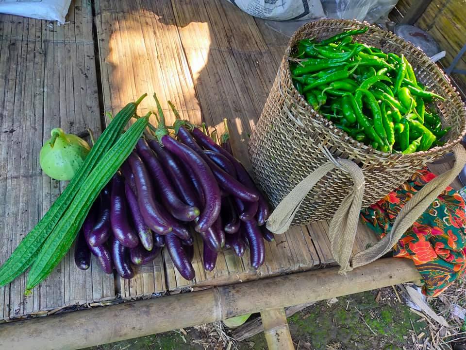 Jom membeli-belah di www.timogah.com – buy local produce.  Setelah seketika belu…