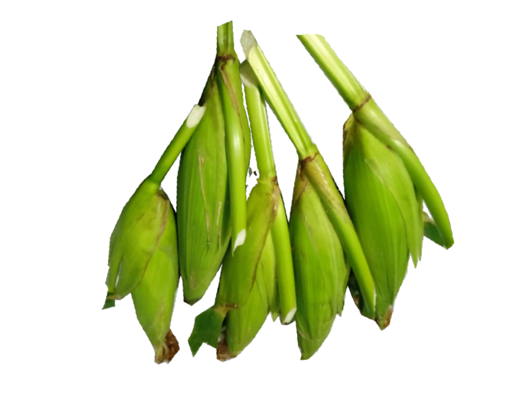 Jagung manis, 5pcs – Timogah