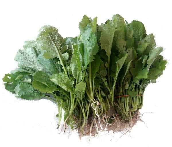 Esok, Isnin 5/4/2021.. stock sayur sabih / ensabi ada di Timogah TDC batu 10, be…