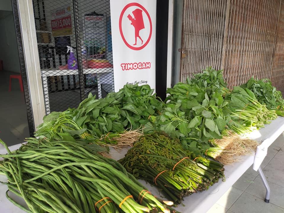 Jom shopping di TIMOGAH Kota Padawan (7am-1pm, Isnin-Jumaat & 7am-11am, Sabt…